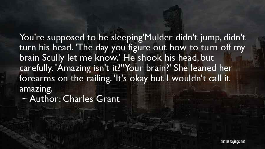 Turn Off Brain Quotes By Charles Grant