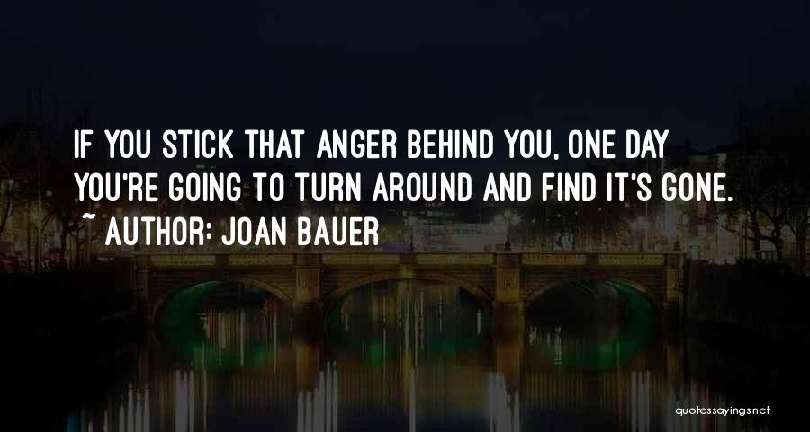 Turn Your Day Around Quotes By Joan Bauer