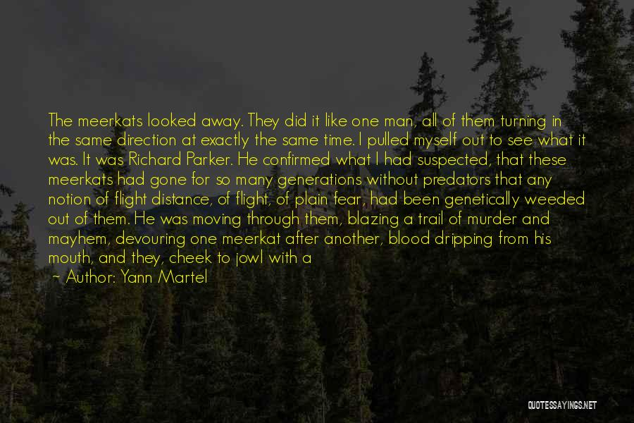 Turning The Other Cheek Quotes By Yann Martel