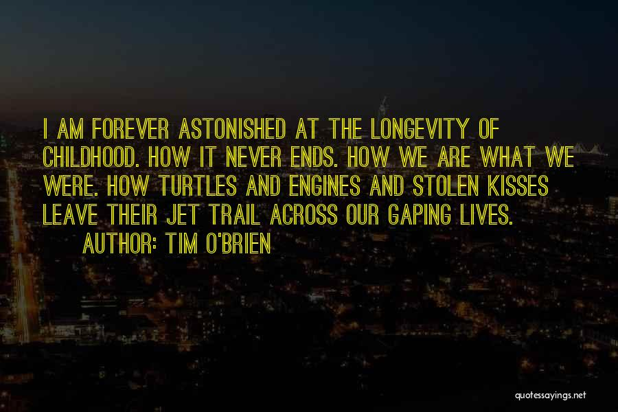 Turtles Forever Quotes By Tim O'Brien