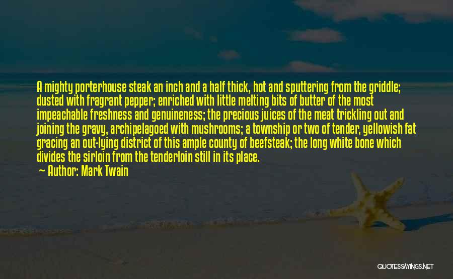 Two Bits And Pepper Quotes By Mark Twain