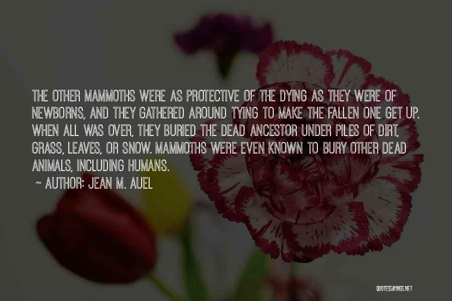 Tying Up Quotes By Jean M. Auel