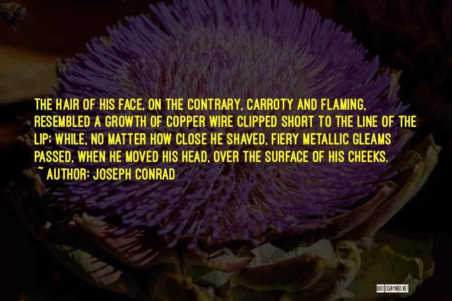 Typhoon Quotes By Joseph Conrad