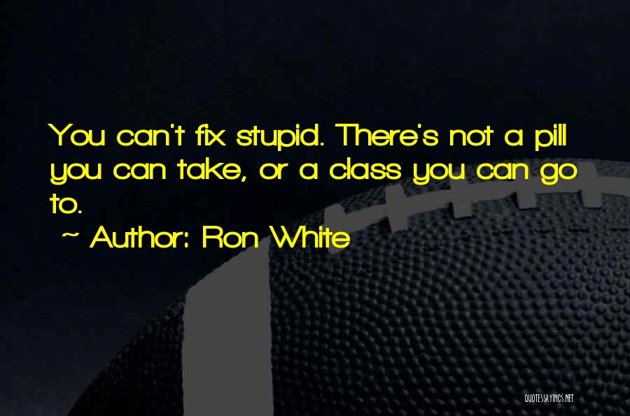 U Can't Fix Stupid Quotes By Ron White