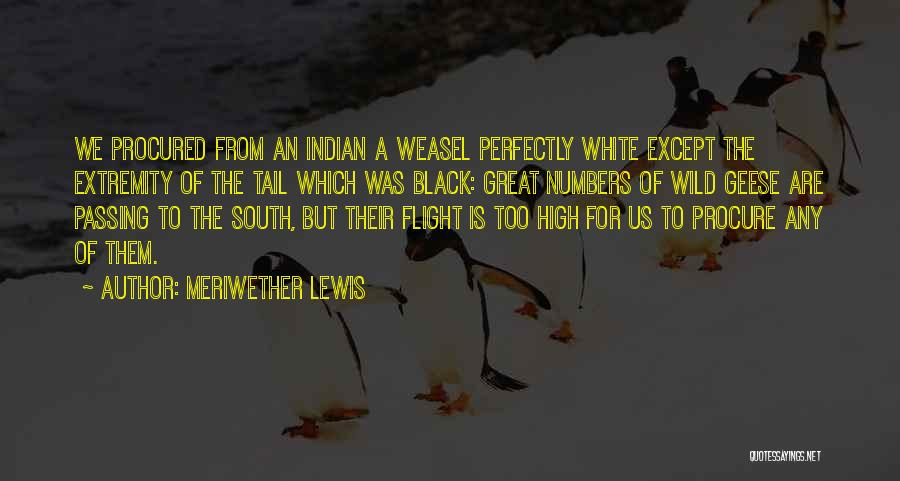 U R Great Quotes By Meriwether Lewis