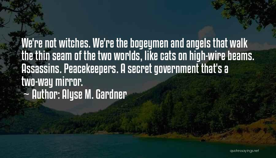 Un Peacekeepers Quotes By Alyse M. Gardner
