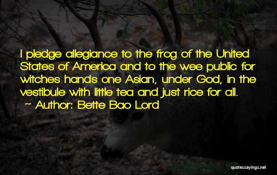 Under God In The Pledge Of Allegiance Quotes By Bette Bao Lord