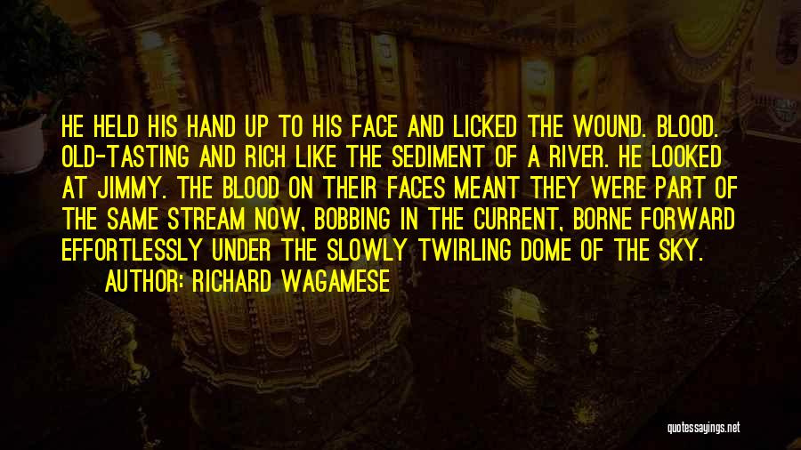 Under The Dome Best Quotes By Richard Wagamese