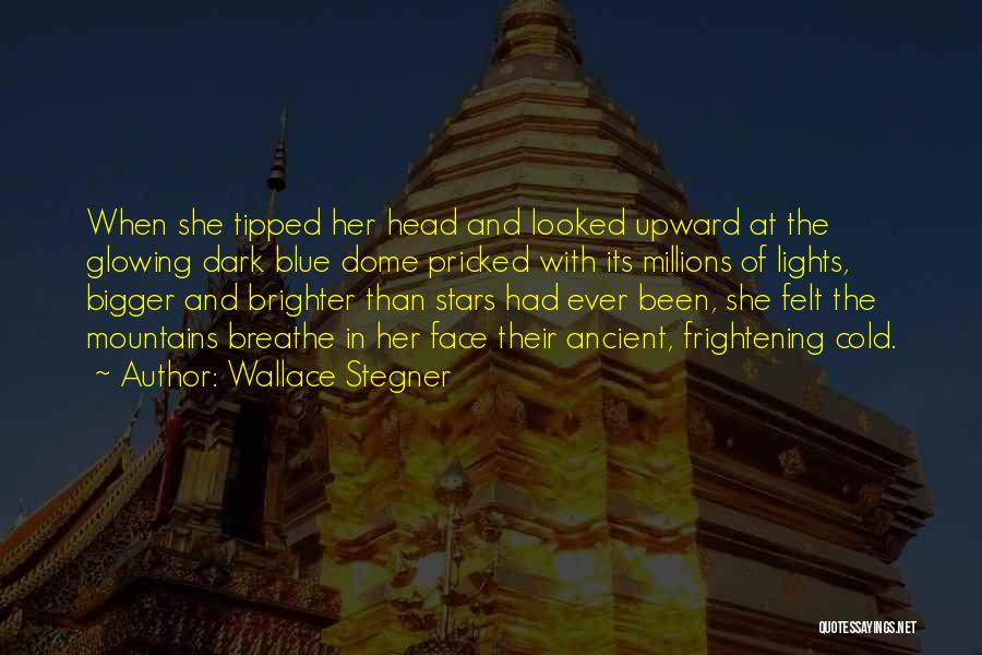 Under The Dome Best Quotes By Wallace Stegner