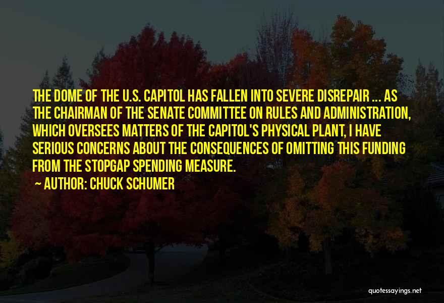 Under The Dome Quotes By Chuck Schumer