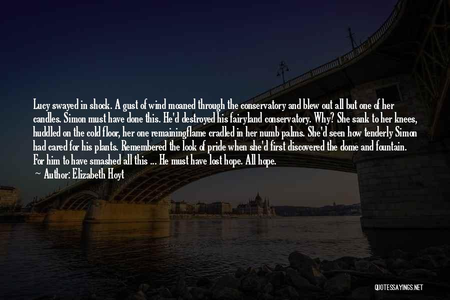 Under The Dome Quotes By Elizabeth Hoyt