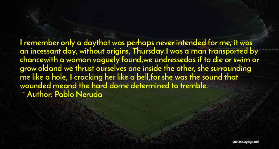 Under The Dome Quotes By Pablo Neruda