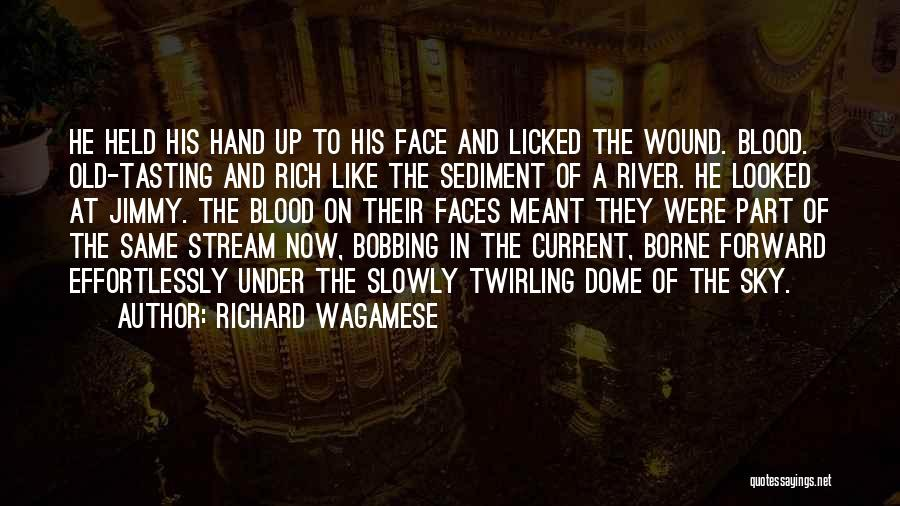 Under The Dome Quotes By Richard Wagamese