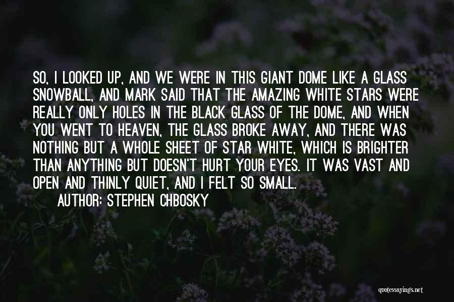 Under The Dome Quotes By Stephen Chbosky