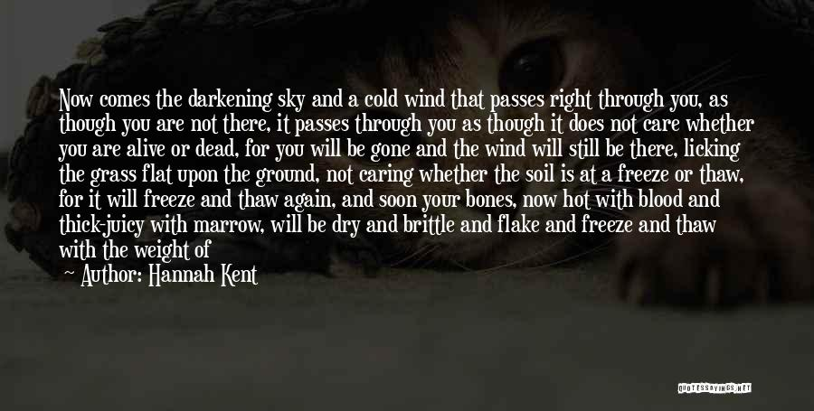 Under The Sea Wind Quotes By Hannah Kent