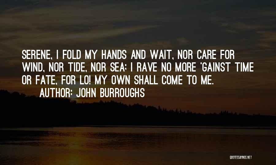 Under The Sea Wind Quotes By John Burroughs