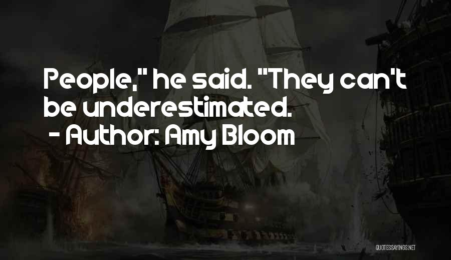 Underestimated Quotes By Amy Bloom