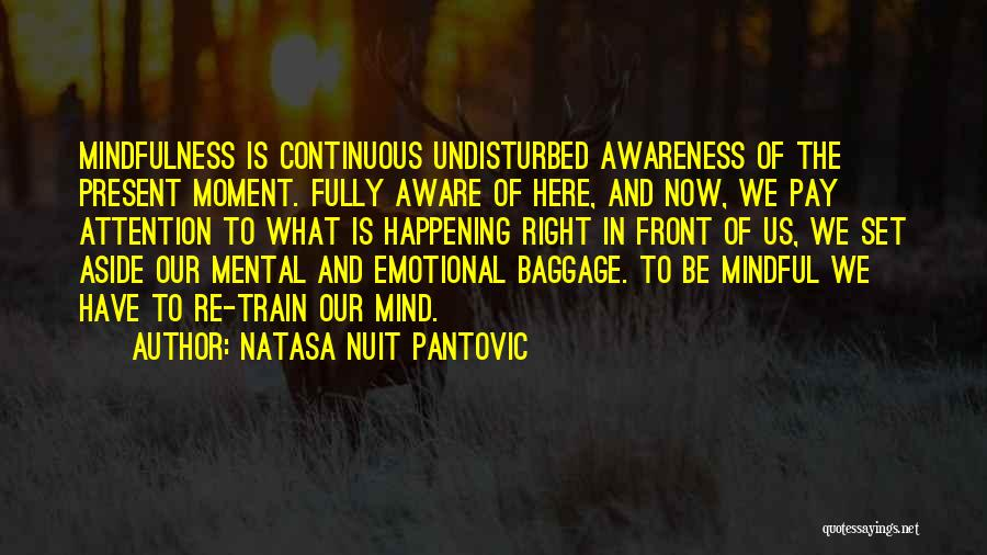 Undisturbed Quotes By Natasa Nuit Pantovic