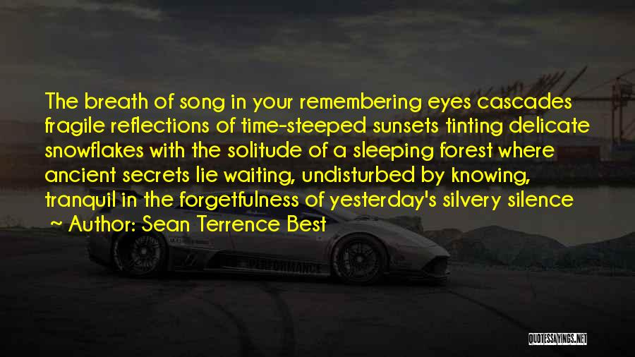 Undisturbed Quotes By Sean Terrence Best