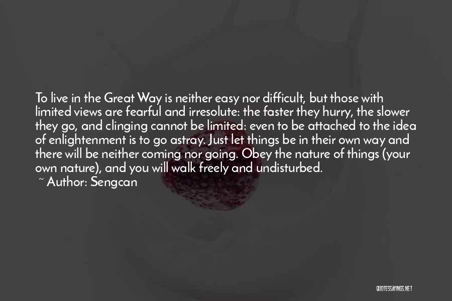 Undisturbed Quotes By Sengcan