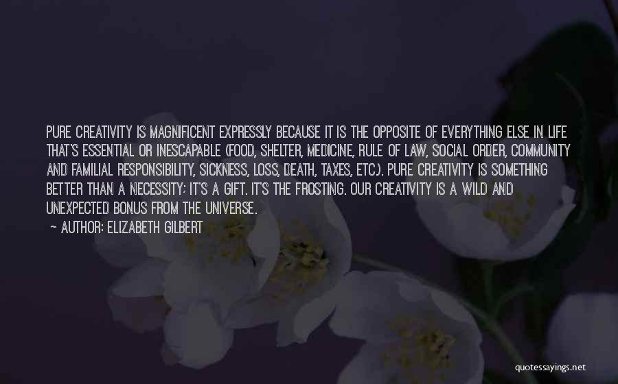Unexpected Loss Quotes By Elizabeth Gilbert