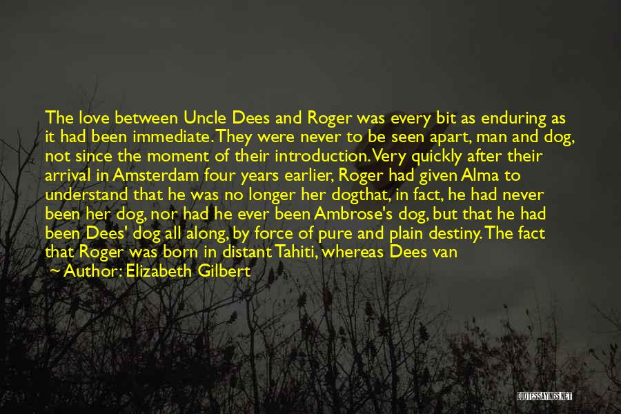 Unfortunate Love Quotes By Elizabeth Gilbert