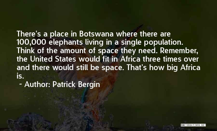 United States Of Africa Quotes By Patrick Bergin