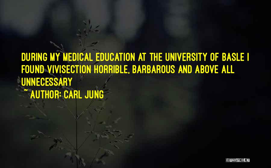 University Education Quotes By Carl Jung