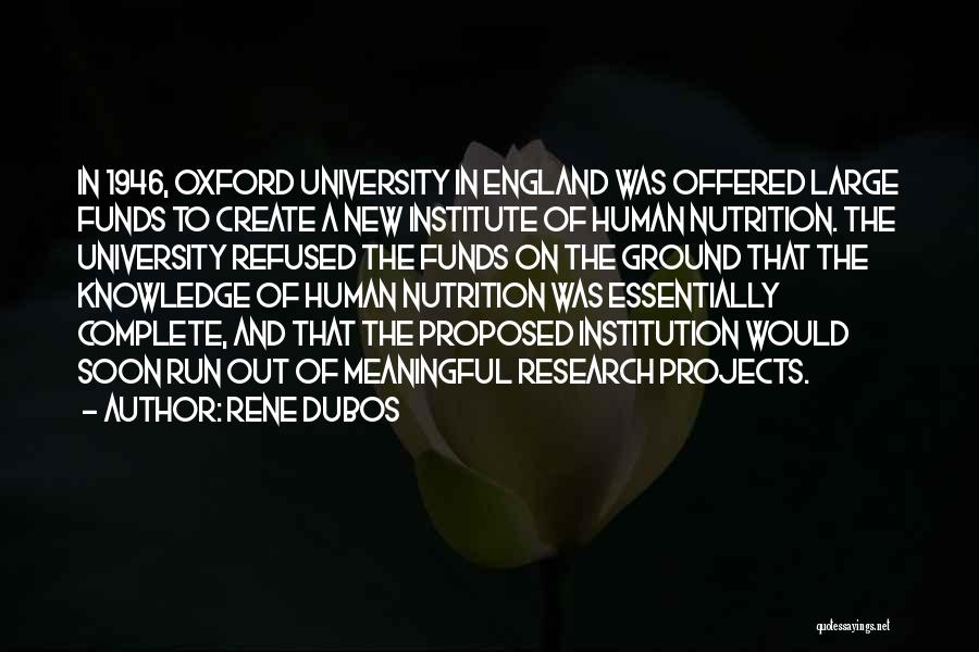 University Of Oxford Quotes By Rene Dubos