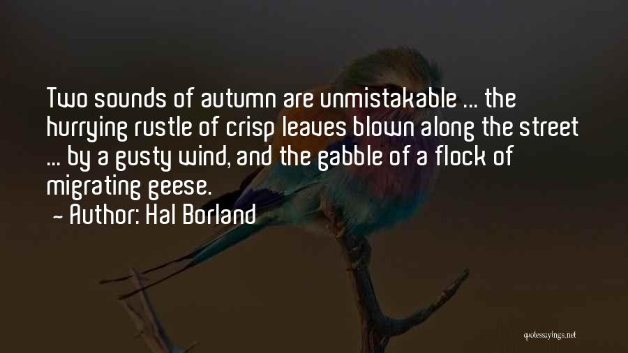 Unmistakable Quotes By Hal Borland