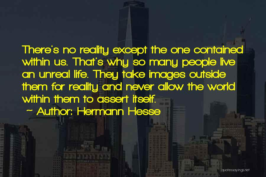 Unreal Quotes By Hermann Hesse
