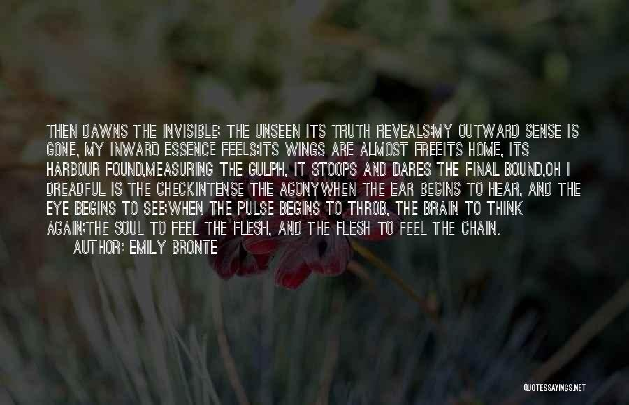 Unseen Pain Quotes By Emily Bronte