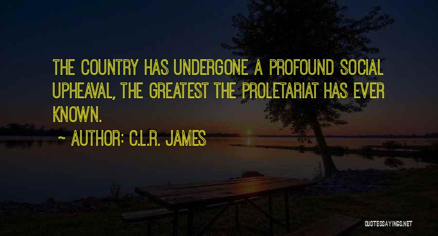 Upheaval Quotes By C.L.R. James