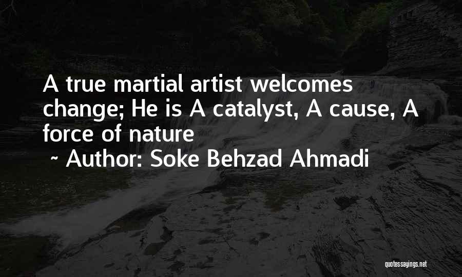 Upheaval Quotes By Soke Behzad Ahmadi