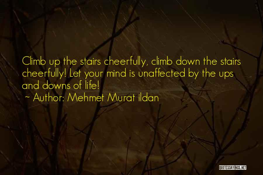 Ups And Downs Of Life Quotes By Mehmet Murat Ildan