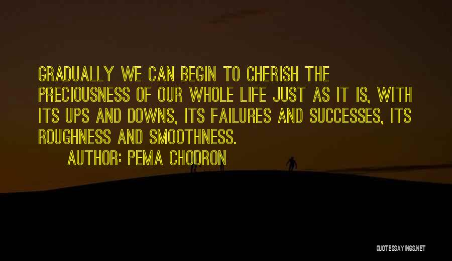 Ups And Downs Of Life Quotes By Pema Chodron