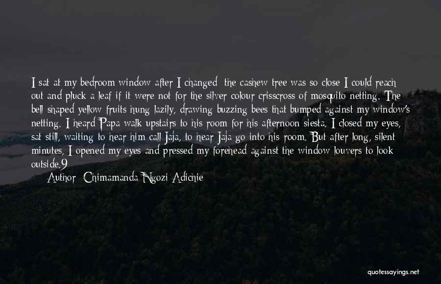 Upstairs Room Quotes By Chimamanda Ngozi Adichie