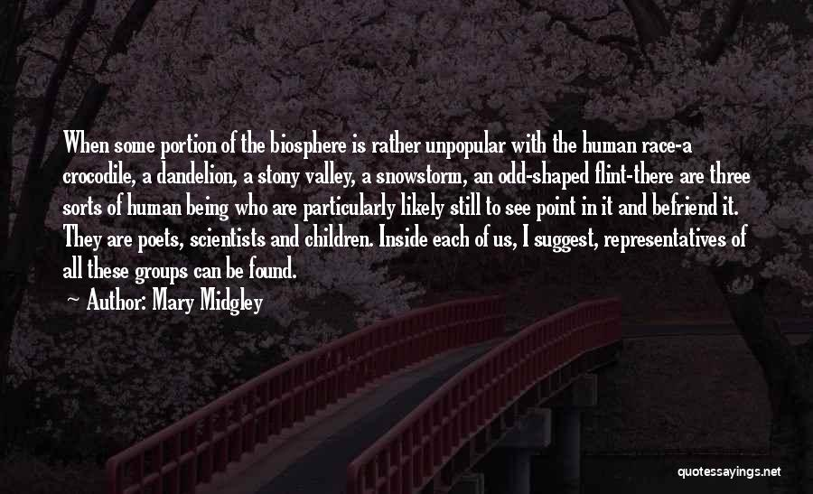 Us All Being Human Quotes By Mary Midgley