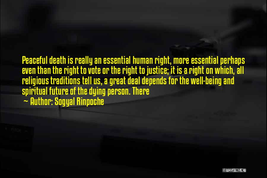 Us All Being Human Quotes By Sogyal Rinpoche