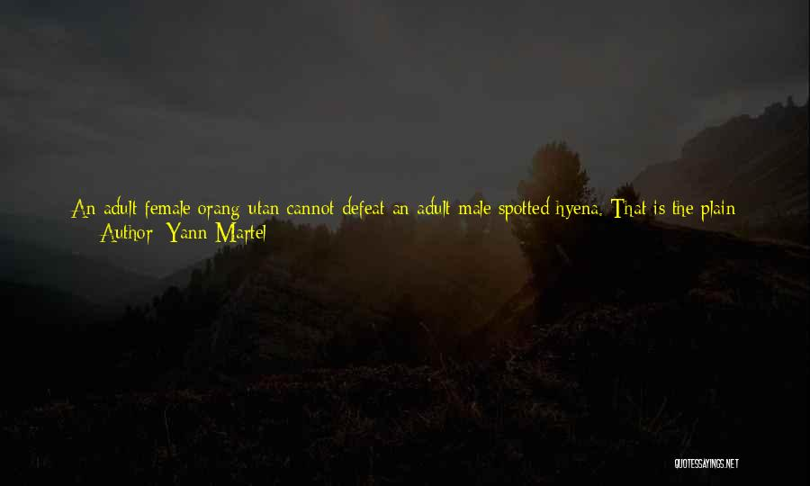Use Of Weapons Quotes By Yann Martel