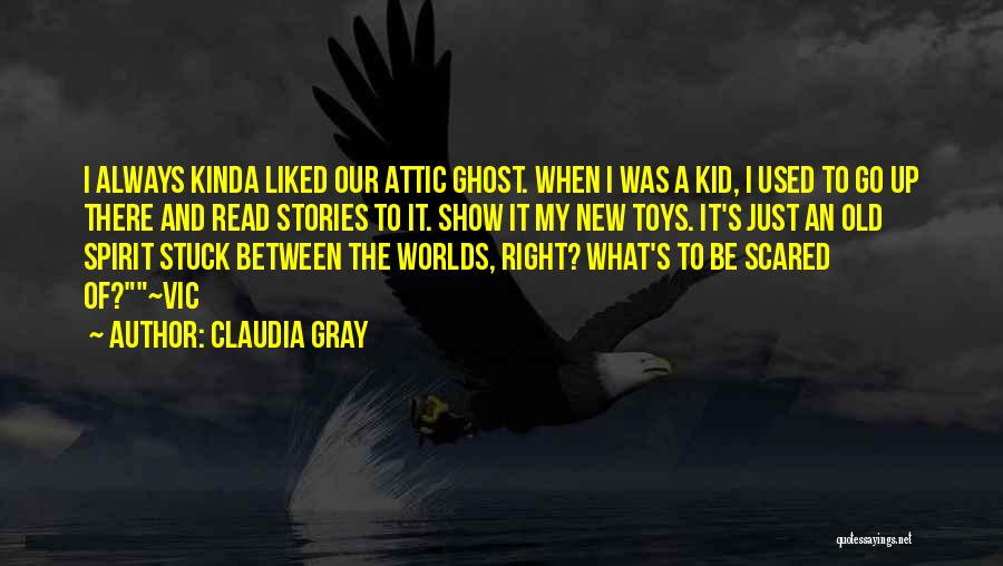 Used Toys Quotes By Claudia Gray