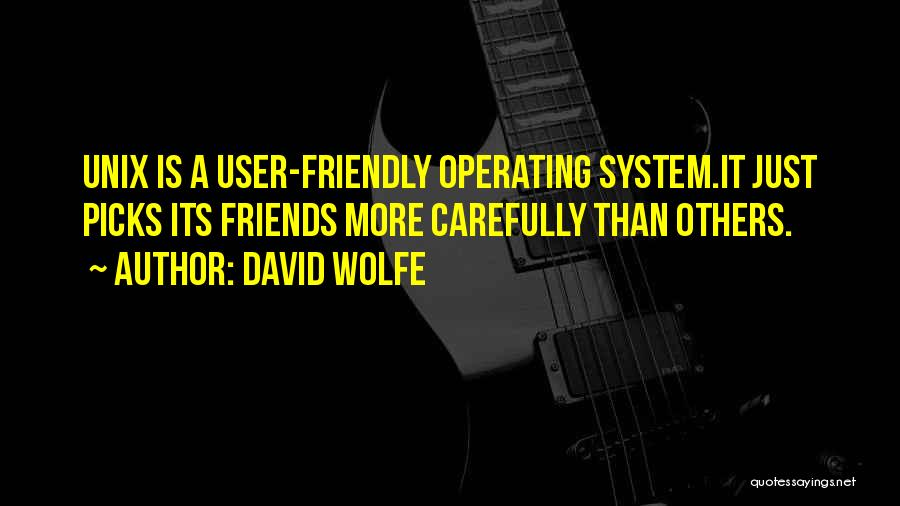 User Friendly Quotes By David Wolfe