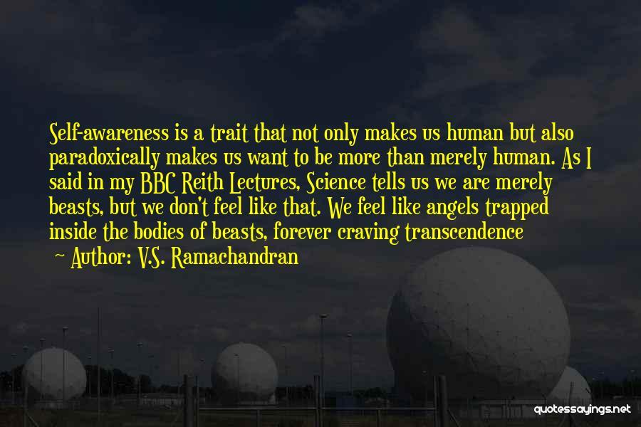 V.S. Ramachandran Quotes 1418163