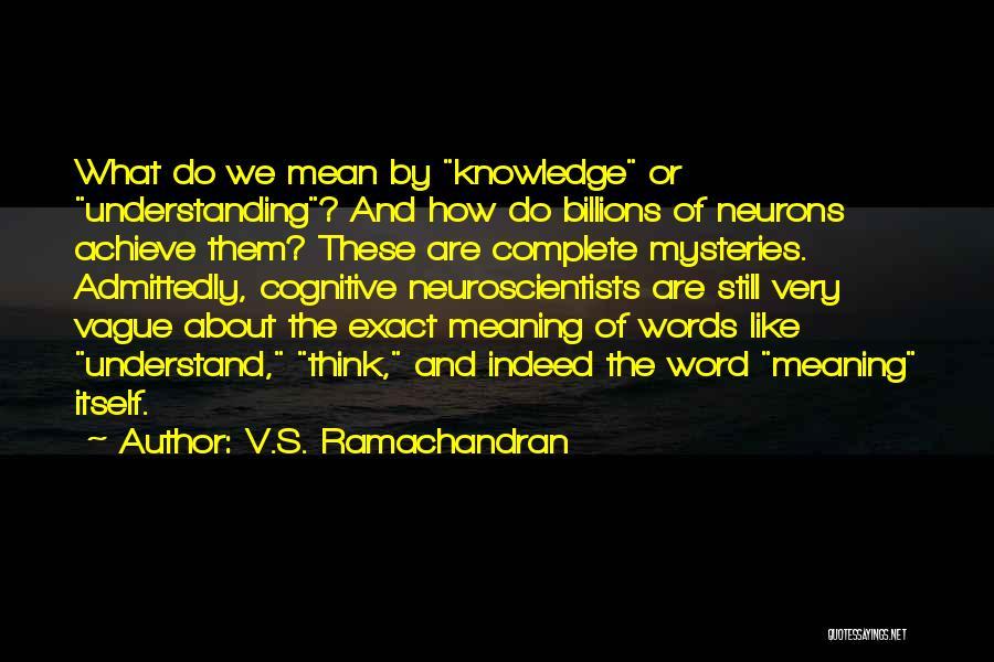 V.S. Ramachandran Quotes 2184623