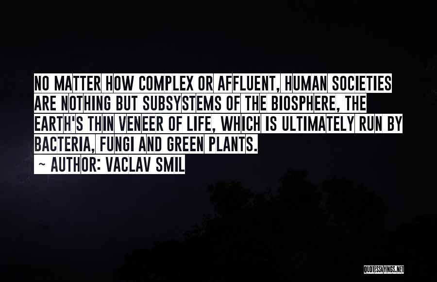 Vaclav Smil Quotes 350247