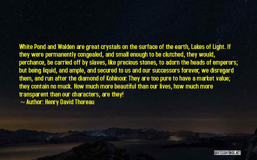 Value Of Small Things Quotes By Henry David Thoreau