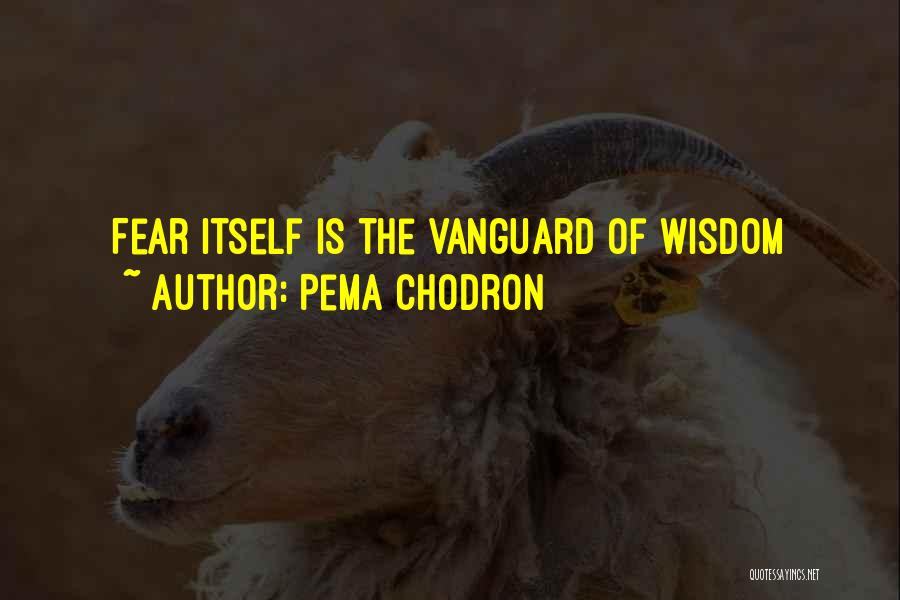 Vanguard Quotes By Pema Chodron