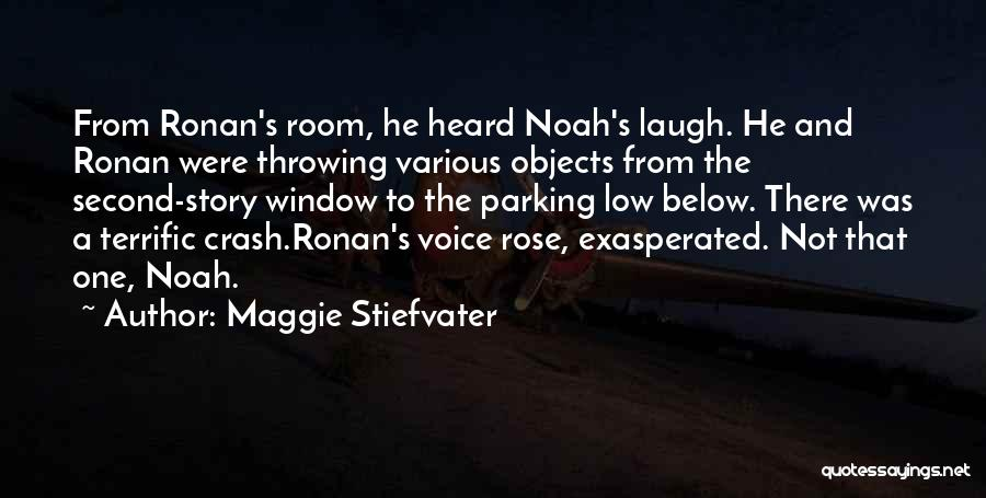 Various Funny Quotes By Maggie Stiefvater