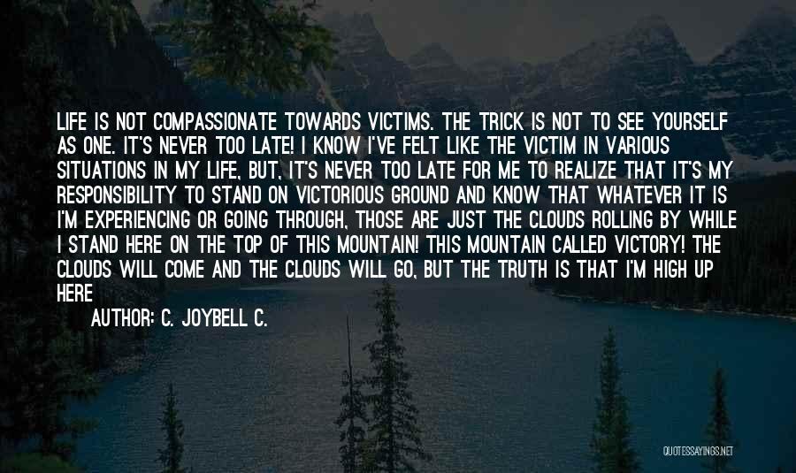 Various Inspirational Quotes By C. JoyBell C.