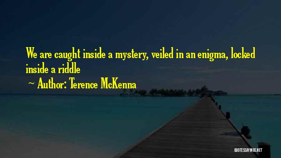 Veiled Quotes By Terence McKenna